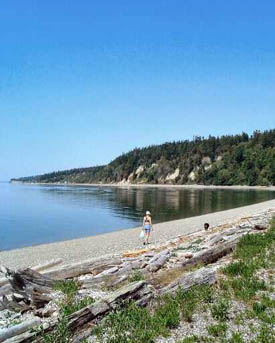 """Hike & Write with the Poet Laureate"" begins July 20 at Cama Beach State Park."